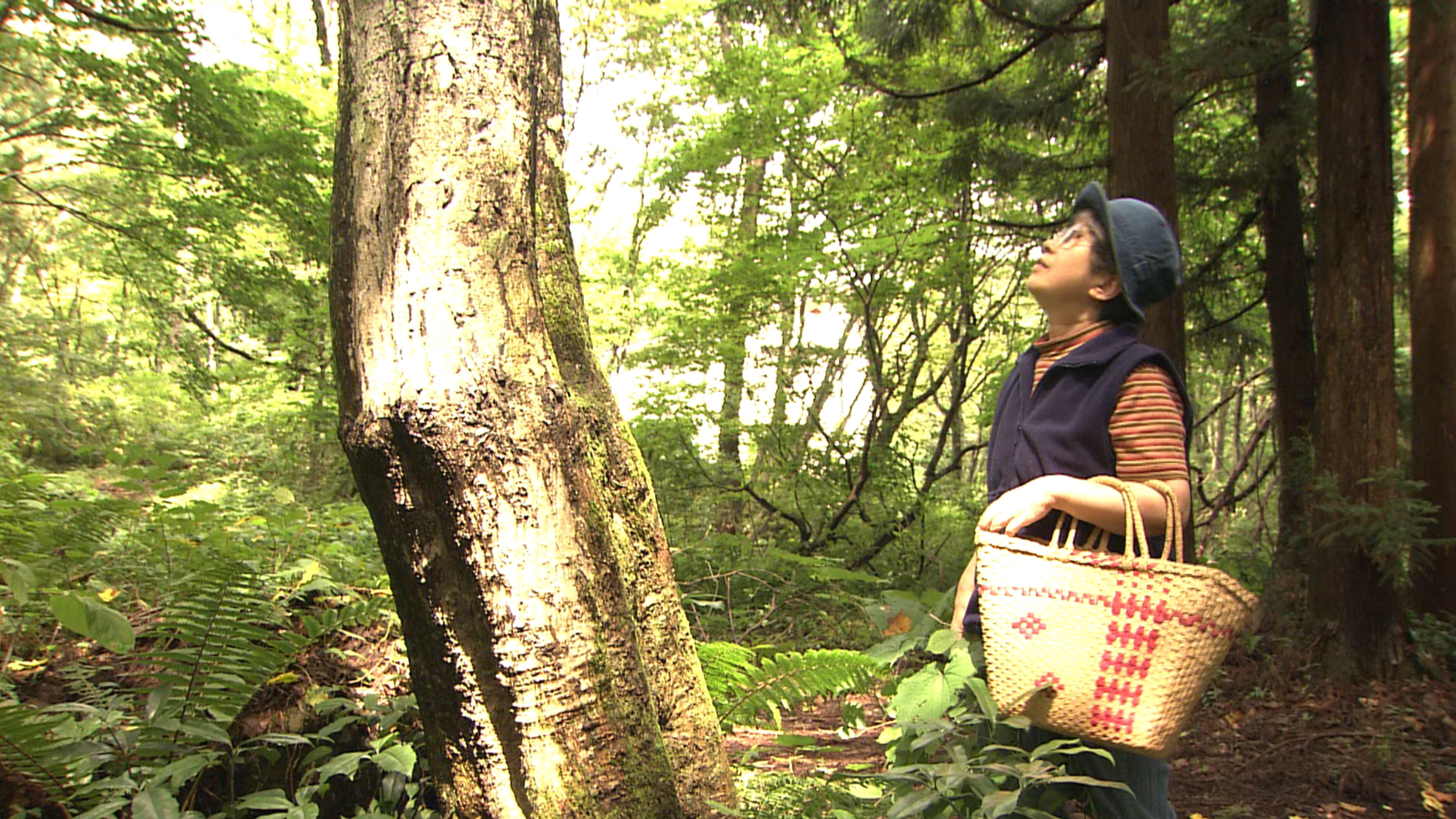 岡野薫子の作品世界 -文と絵と-