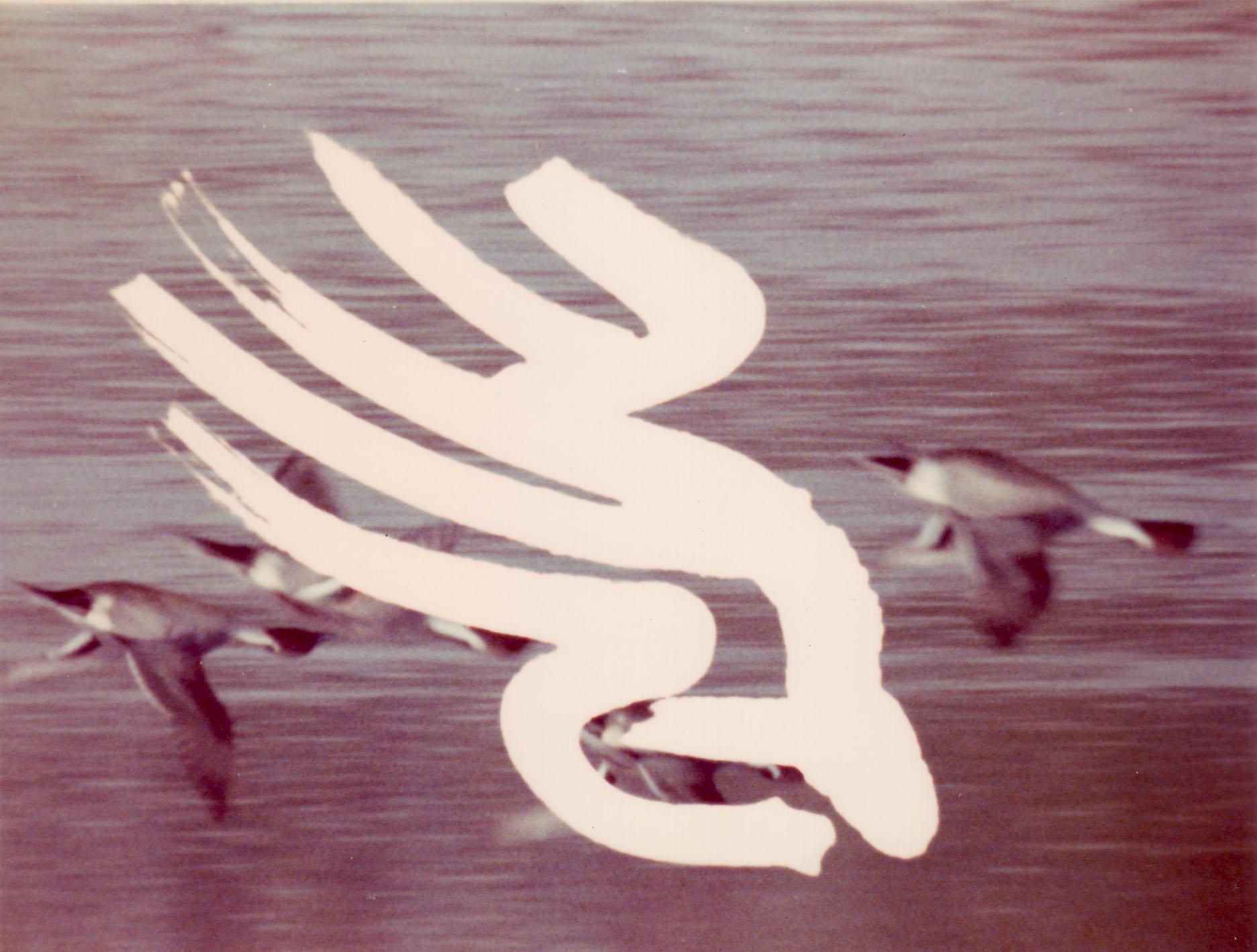 漢字の表現 -篆書と隷書-
