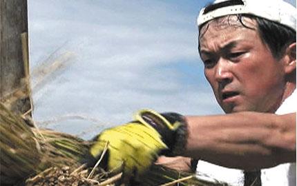 里山はうまい米を育む ~山形県高畠町の1年~