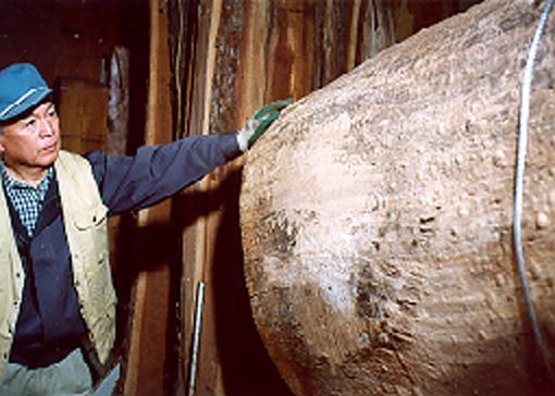 木の生命よみがえる -川北良造の木工芸-
