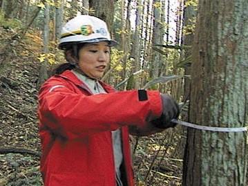 ガイアの夜明け 森が泣いている 日本林業を復興せよ